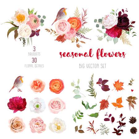 Illustration pour Peachy rose, white and burgundy red peony, orange ranunculus - image libre de droit