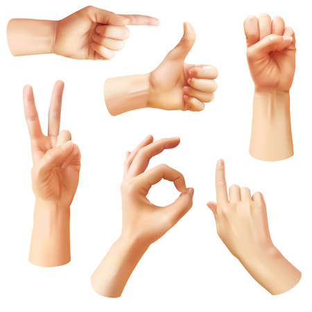 Illustration pour Realistic hand. Various gestures human hands, ok, thumb up and pointing finger, pinch and fist. Optimistic arm gesture, communication vector isolated symbols - image libre de droit