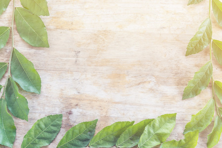 leaf on wooden table background