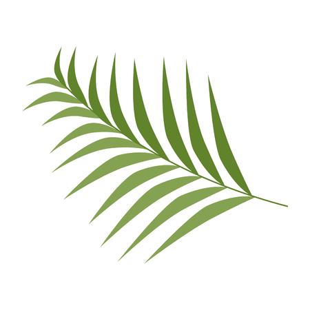 Tropical palm leaf icon vector illustration design