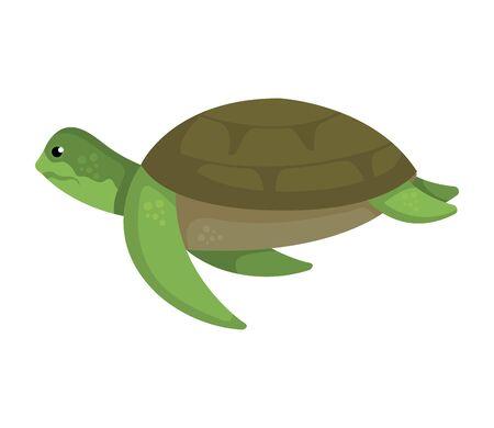 Illustration pour turtle animal nature icon vector illustration design - image libre de droit