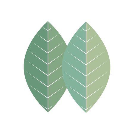Illustration pour leaf plant ecology isolated icon vector illustration design - image libre de droit