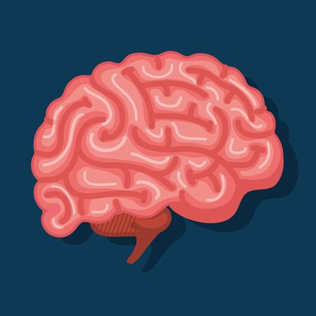 Illustration pour intelligence brain with memory and health creative vector illustration - image libre de droit