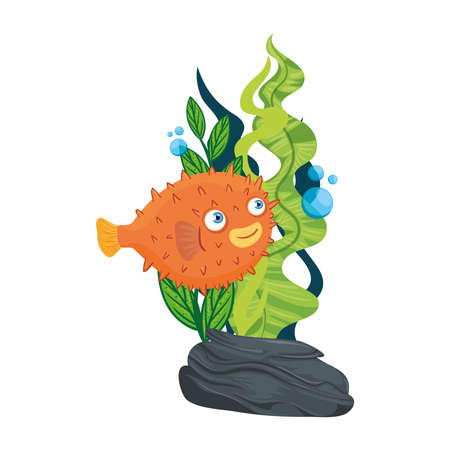 Illustration pour sea underwater life, blowfish animal and seaweed on white background vector illustration design - image libre de droit