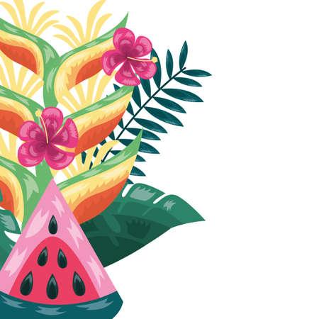 Illustration pour watermelon flowers leaves tropical fruits foliage vector illustration - image libre de droit
