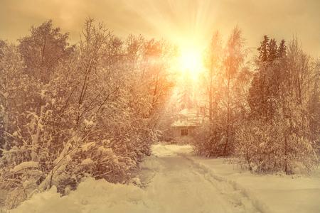 Photo pour Beautiful winter view on villa in snow at forest. - image libre de droit