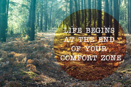 Photo for life begins at the end of your comfort zone written on forest pathway landscape - Royalty Free Image