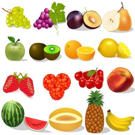 illustration set ripe fruit and berries on white