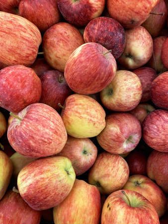 Photo for Red juicy ripe apples close up - Royalty Free Image