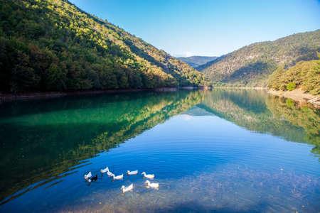 Foto de Ducks on the Borabay Lake in Amasya - Imagen libre de derechos