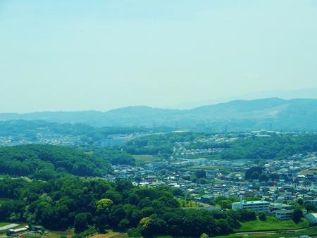 Yuzohamaguchi180700010