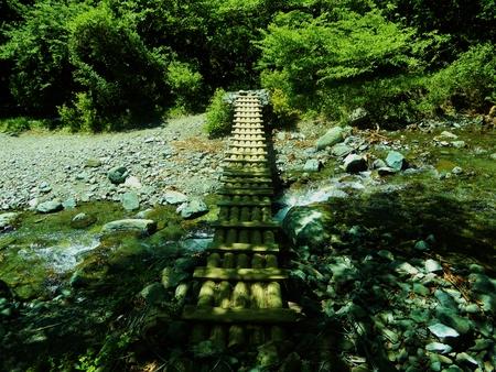 Yuzohamaguchi180800010