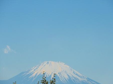 Yuzohamaguchi180800078