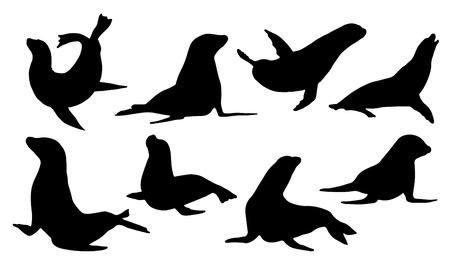 Illustration pour sea lion silhouettes on the white background - image libre de droit