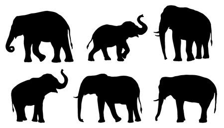 Ilustración de elephant silhouettes on the white background - Imagen libre de derechos