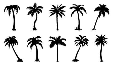 Illustration pour palm silhouttes on the white background - image libre de droit