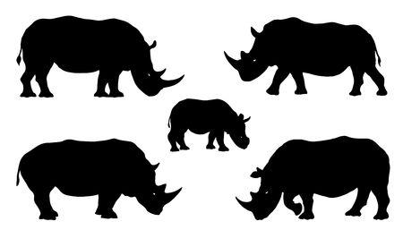 Ilustración de rhino silhouettes on the white background - Imagen libre de derechos