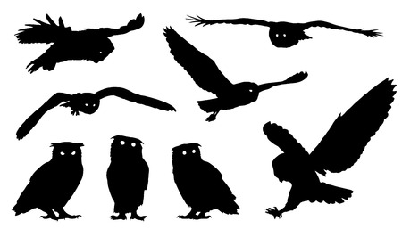 Ilustración de owl silhouettes on the white background - Imagen libre de derechos