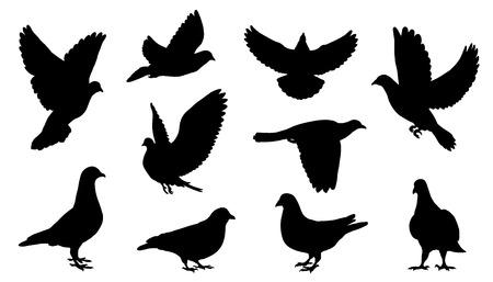 Ilustración de dove silhouettes on the white background - Imagen libre de derechos