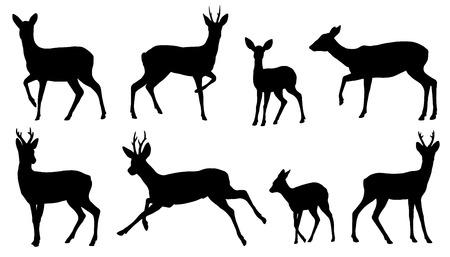 Ilustración de roe deer silhouettes on the white background - Imagen libre de derechos