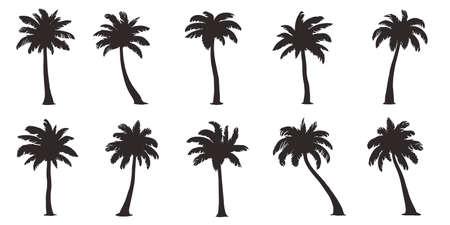 Illustration pour Various coconut palm on the white - image libre de droit