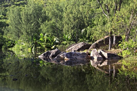 Beautiful lake with stone blocks near the Le Chevalier Bay Guesthouse. Praslin Island in the Seychelles.