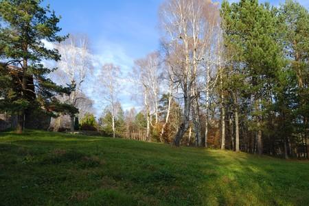 Photo pour Beautiful autumn sunny day in the village - image libre de droit