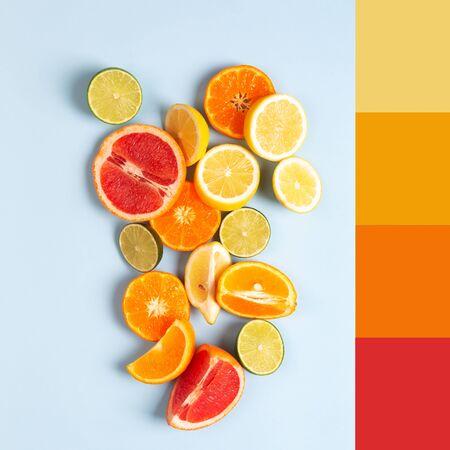 Photo pour Color Matching Palette Made with Picture of Different Citrus Fruits With Colour Scheme - image libre de droit