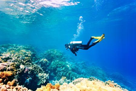 Photo pour Female scuba diver swimming under water - image libre de droit