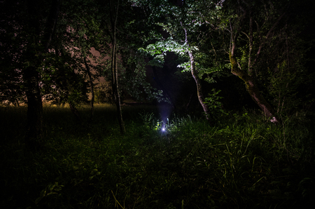 Strange silhouette in a dark spooky forest at night, mystical landscape surreal lights with creepy man. Foggy night