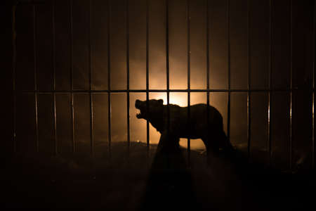 Photo pour Silhouette of a Bear miniature standing in a zoo cage dreams of freedom. Creative decoration with colorful backlight with fog. Selective focus - image libre de droit