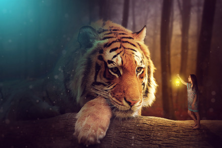 Foto de A fantasy world - a woman and a giant tiger - Imagen libre de derechos