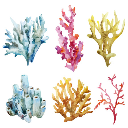 Illustration pour Beautiful watercolor vector set with ocean corals - image libre de droit