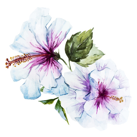 Beautiful image with nice watercolor hibiscus flower