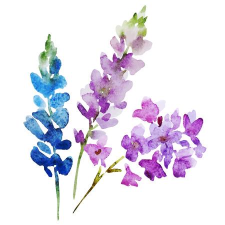 Illustration pour Beautiful image with nice watercolor flowers - image libre de droit