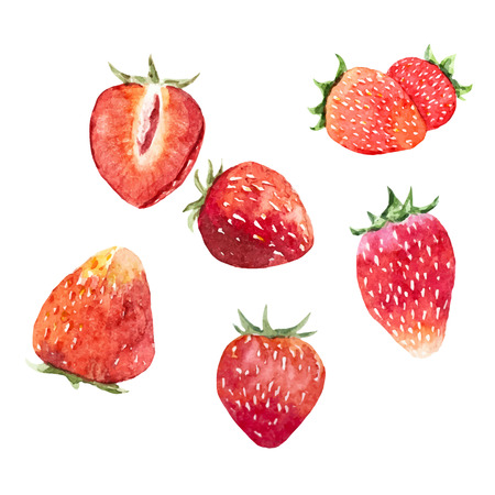 Illustration pour Watercolor strawberry vector set - image libre de droit