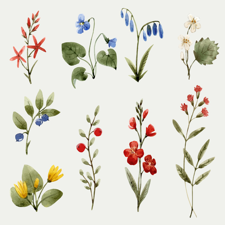 Illustration pour Beautiful vector seamless pattern with hand drawn watercolor flowers - image libre de droit