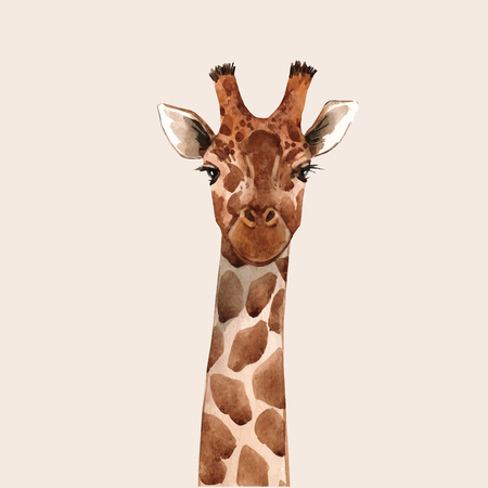 Ilustración de Beautiful watercolor hand drawn giraffe head vector portrait - Imagen libre de derechos