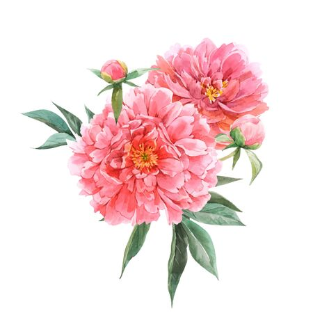 Illustration pour Beautiful vector floral bouquet composition with watercolor pink peony flowers. Stock illustration - image libre de droit