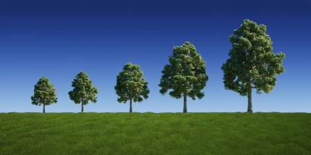 3d rendering of a green field with trees getting bigger and bigger