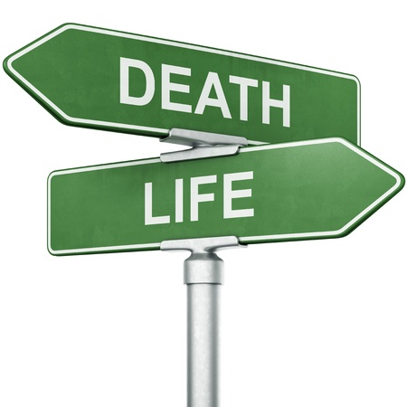 3d rendering of signs with LIFE and DEATH pointing in opposite directions