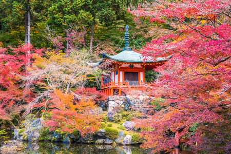 Photo for Kyoto, Japan - November 23, 2018: The Bentendo Hall is famous for the beautiful colored leaves in the fall when maples and ginkgos turn red and yellow. - Royalty Free Image