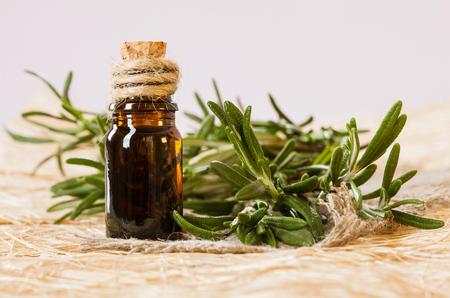 Fresh rosemary branch and a bottle of essential oil - concept of natural skincare and haircare