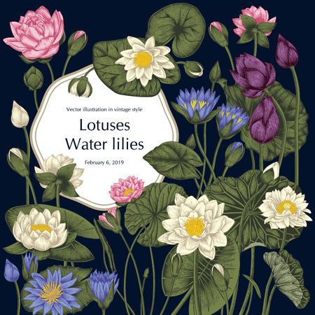 Ilustración de Lotus and water lilies, Water plants. Vector illustration in vintage style. Vegetable drawing. - Imagen libre de derechos