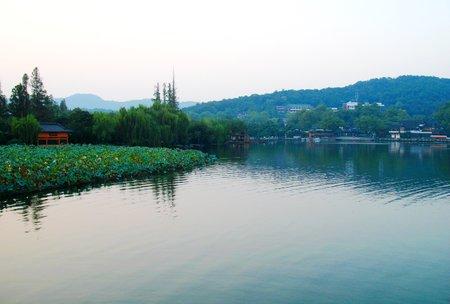 Zhangbo141200455