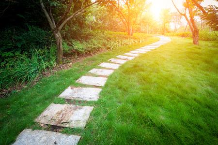 stair way on green garden
