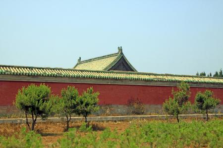 Zhangyuangeng160600665