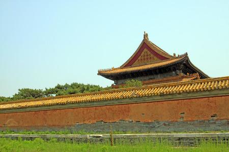 Zhangyuangeng160600785