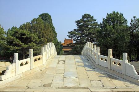 Zhangyuangeng160600796