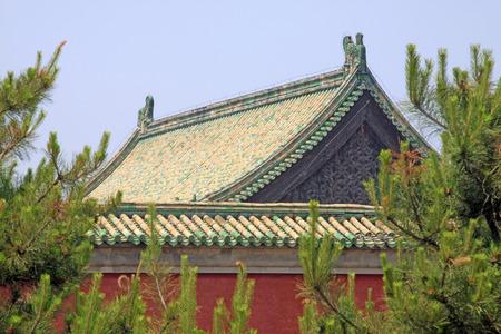 Zhangyuangeng160600816